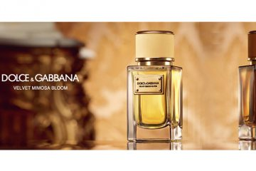 Dolce&Gabbana : Collection Velvet : Mimosa Bloom et Exotic Leather