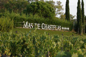 LE MAS DE CHASTELAS : JE T'AIME … MOI NON PLUS 3