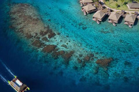 Heiva i Tahiti: Un festival polynésien haut en couleur mis à l'honneur à l'Intercontinental Tahiti Resort & Spa !